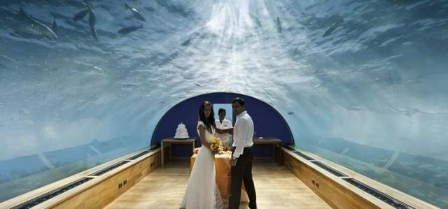 romance undersea