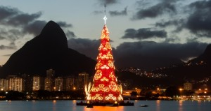 Most Beautiful Christmas Trees from Around the World