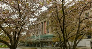 The Brooklyn Museum: The Oldest and the Biggest in New York